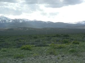 Pampa Anden Malargue 1